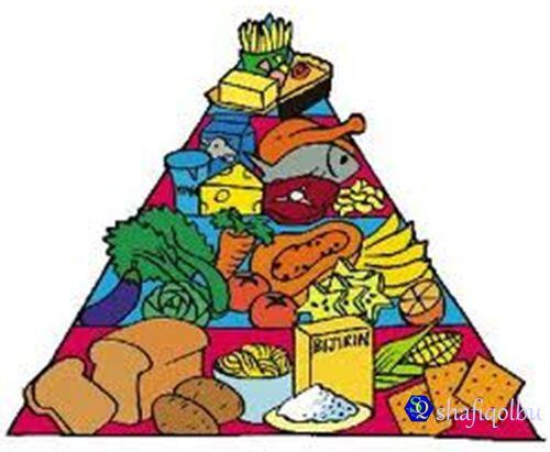 Pemakanan Sihat Mengikut Amalan Diet Rasulullah Saw Shafiqolbu