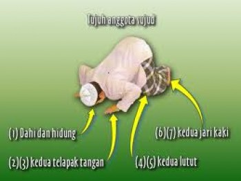 http://shafiqolbu.files.wordpress.com/2012/09/sujud-rukun-e1348758147626.jpg%3Fw%3D570